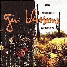 220px-GinBlossomsNewMiserableExperienceOriginal